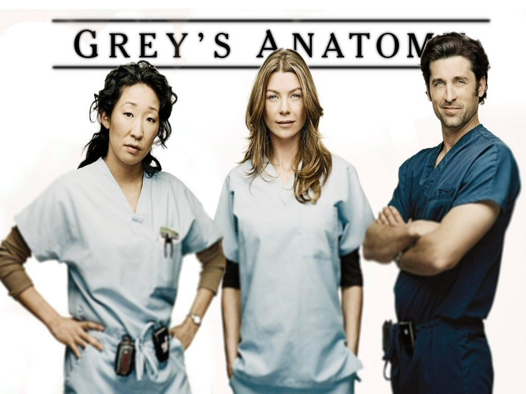 Greys Anatomy How To Save A Life The Fray Picnic English